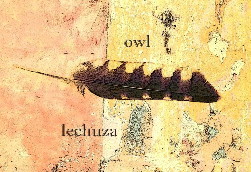 OWLfeather4blog